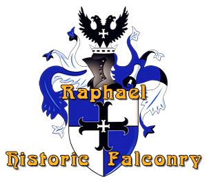 Raphael Historic Falconry arms