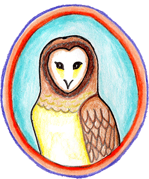 Drawing of an Owl