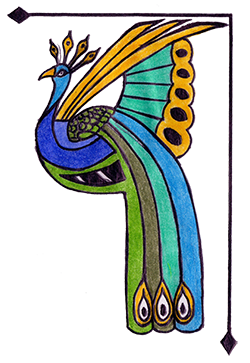Decorative Peacock image